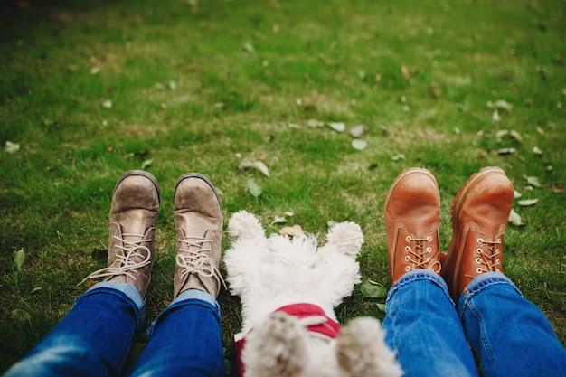 Cão e casal na grama verde com folhas. concentre-se nos pés. pessoas relaxando depois de caminhar. lugar para inscrição