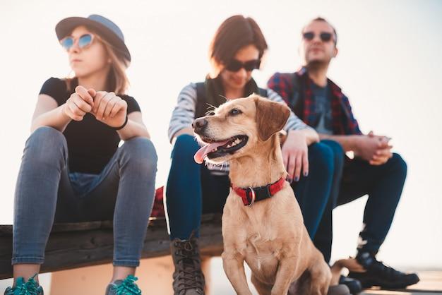 Cão e família sentado ao ar livre em um deck de madeira