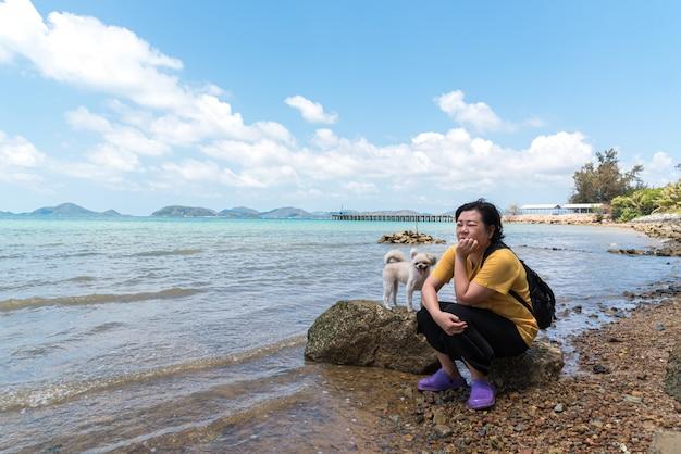 Cão feliz diversão na praia rochosa quando viajar no mar