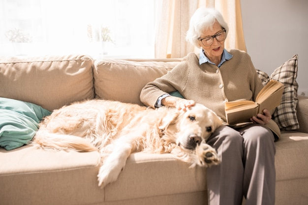 Cão feliz no sofá com a senhora idosa
