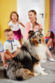 Cão pastor das shetland e grupo de crianças
