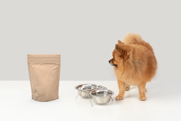 Cão, vendo, cobertura