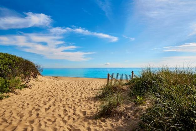 Cape cod, arenque, enseada, praia, massachusetts, nós