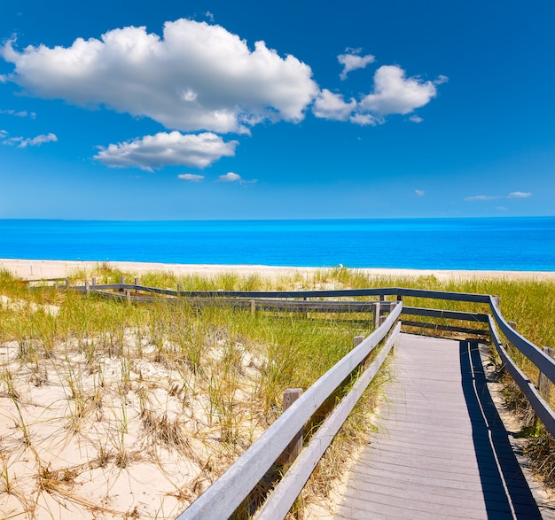Cape cod sandy neck beach, massachusetts, eua