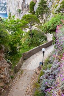 Capri, via krupp, itália.