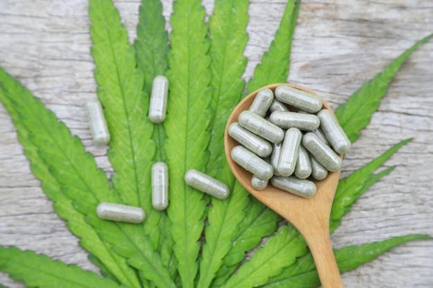 Cápsulas de ervas da folha de cannabis para remédio saudável