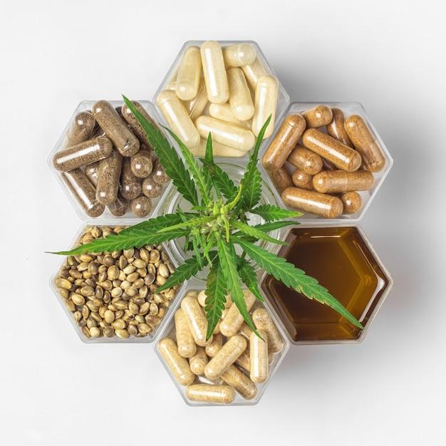 Cápsulas de medicamento de cannabis, óleo e sementes de cânhamo e planta verde em potes de favo de mel
