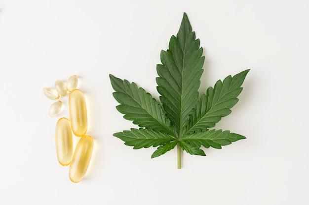 Cápsulas de óleo cbd cápsulas de óleo de cânhamo medicinal conceito de cultivo de plantas de cannabis e suplementos alimentares