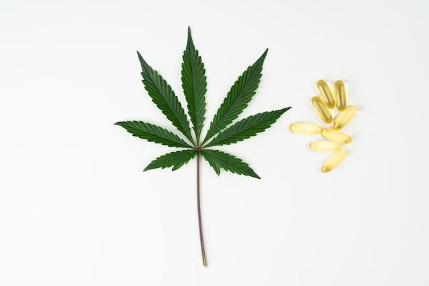 Cápsulas de óleo essencial de cannabis com folha de cannabis indica em fundo branco