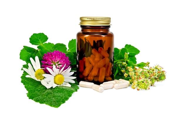 Cápsulas em potes marrons selados e raminhos de hortelã, flores de camomila, trevo, mignonette, folha de sálvia isolada no fundo branco