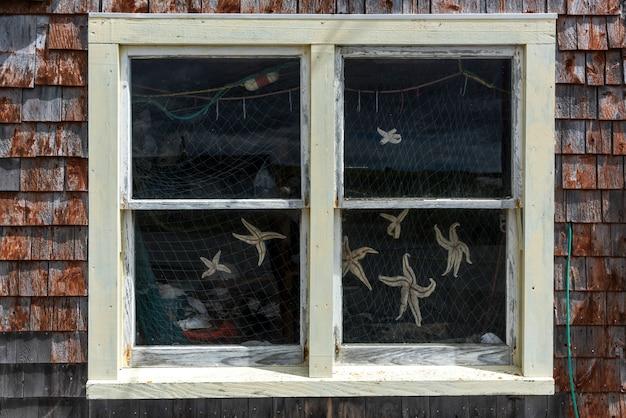 Capturado, peixe estrela, dentro, um, pesca, galpão, em, porto, peggy's, enseada, nova escócia, canadá
