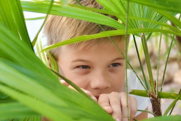 Cara à espreita nos arbustos. uma criança se esconde nas folhas verdes
