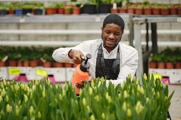 Cara de jardineiro africano. jardineiro com regador. canteiros de flores. Foto Premium