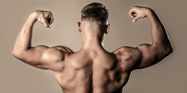 Cara de músculos nus, saudáveis masculinos, homem de torso, isolado. homem com braços musculosos, tríceps. costas musculosas, homem musculoso, costas musculosas, torso nu.
