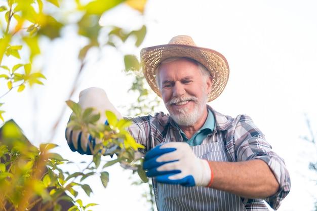 Cara feliz. homem aposentado feliz sentindo-se bem enquanto trabalhava no jardim
