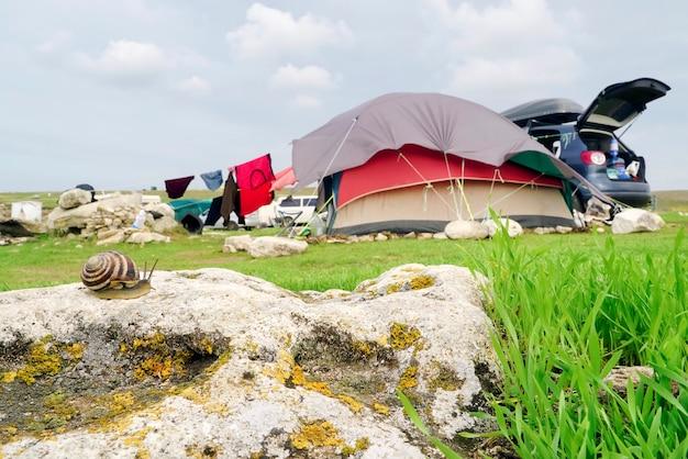 Caracol no fundo da tenda na praia. tarhankut. crimeia
