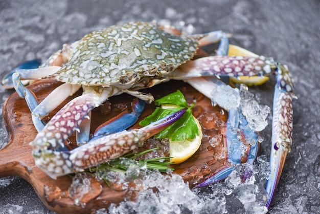 Caranguejo de frutos do mar no gelo - caranguejo marinho azul fresco cru com gelo em fundo escuro no restaurante