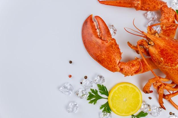 Caranguejo de lagosta saboroso com garra grande sobre fundo branco.