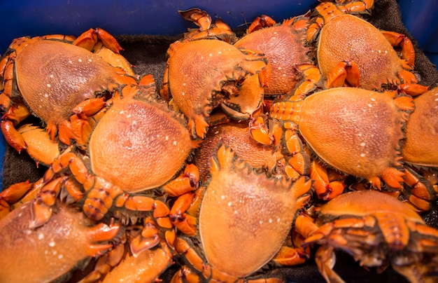 Caranguejos no mercado