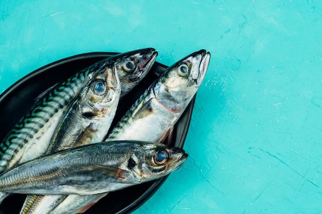 Carapau e cavala quatro peixes frescos em uma placa preta sobre uma mesa azul.