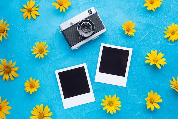 Cardo de ostras espanholas com câmera polaroid e fotos