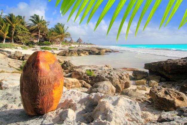 Caribe tulum méxico praia de coco turquesa