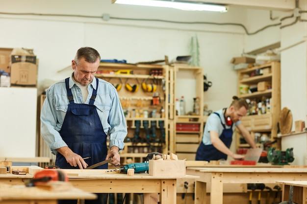 Carpinteiros montagem de móveis
