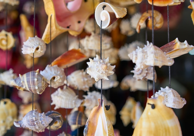 Carrilhão de vento móvel do seashell handcraft