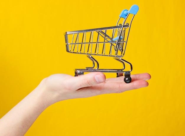 Carrinho de compras de metal mini brinquedo na mão