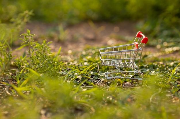 Carrinho de compras na grama verde com luz do sol. compras ambientalmente conceito.