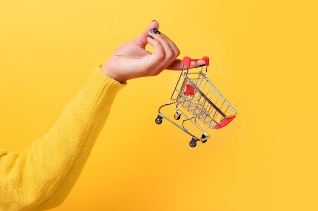 Carrinho de compras na mão