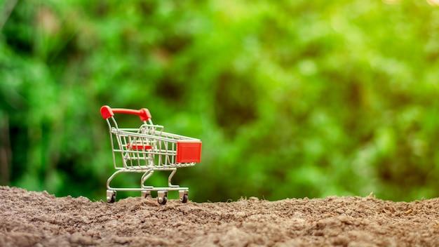 Carrinho de compras vazio pequeno na terra.