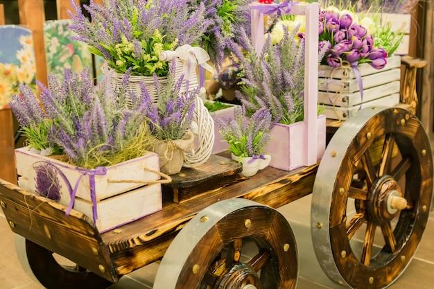 Carrinho de mão com as caixas de madeira cheias de flores de florescência da alfazema. elementos decorativos.
