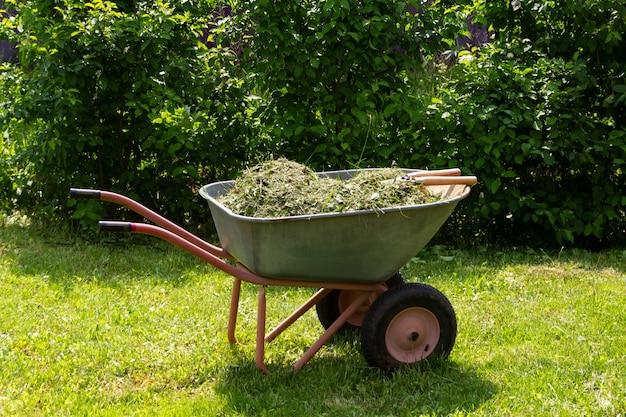 Carrinho de mão com grama e folhas jardinagem corte sazonal de árvores, arbustos e outras plantas