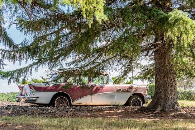 Carro antigo abandonado cercado por árvores nas pradarias de saskatchewan, no canadá