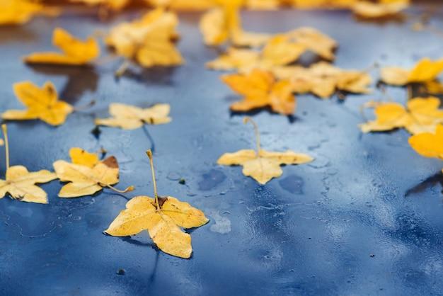 Carro coberto com folhas de outono. fundo de outono. tempo chuvoso de outono. folhas amarelas caem no carro.