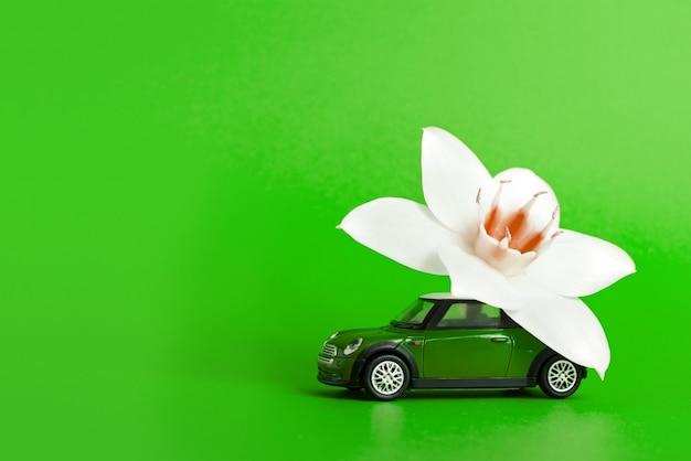Carro de brinquedo entrega uma flor branca sobre um fundo verde. conceito de entrega de flores. dia internacional da mulher, 8 de março, dia dos namorados