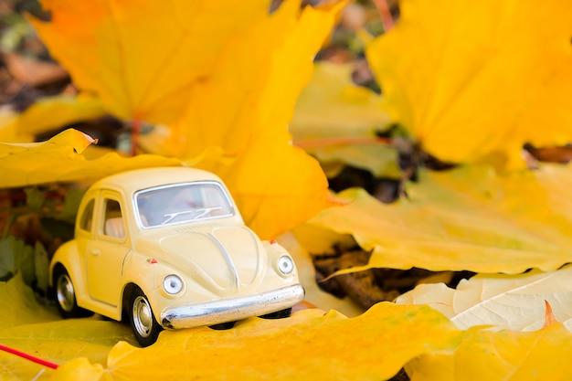 Carro de brinquedo retrô amarelo na folha de bordo do outono. conceito de viagens e férias de outono.
