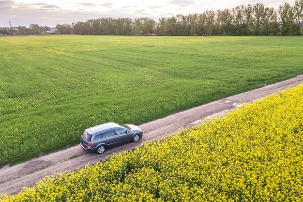 Carro dirigindo pela estrada de terra reta através de campos verdes com plantas florescendo colza.