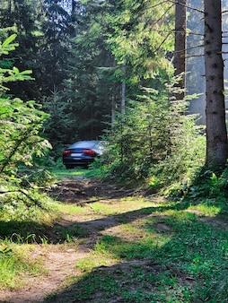 Carro estacionado na floresta viagem de verão