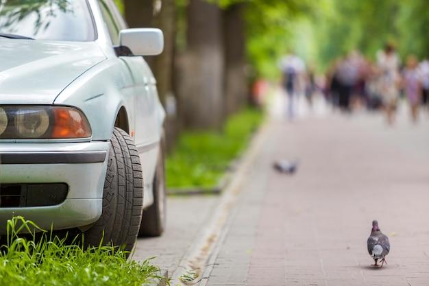 Carro estacionado na zona pedonal sob árvores ao longo da rua com pessoas a andar num dia de verão.