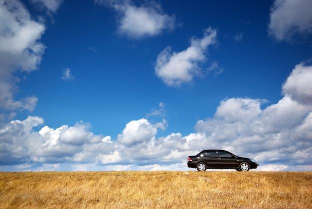 Carro no prado