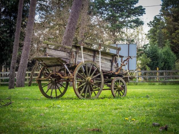 Carruagem velha e desgastada no jardim durante o dia