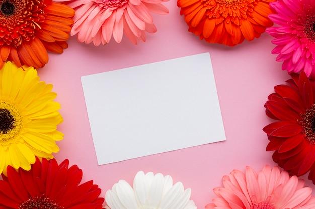 Cartão branco em branco, rodeado por flores gerbera