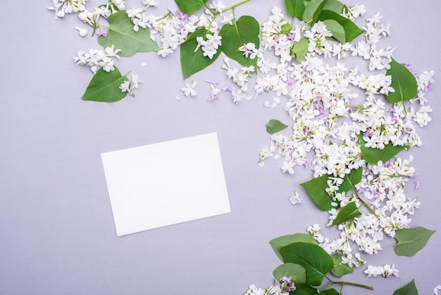 Cartão branco para texto e parabéns com lindas flores lilás e folhas verdes.