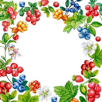 Cartão com frutos silvestres com um lugar para uma inscrição
