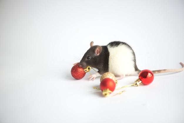 Cartão de ano novo símbolo do rato do ano novo 2020 na decoração de natal
