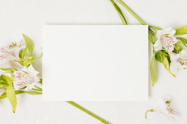 Cartão de casamento em branco sobre a flor de alstromeria em pano de fundo branco