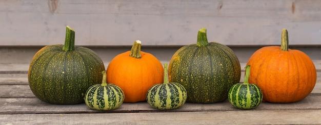 Cartão de feliz dia das bruxas. abóbora laranja brilhante. decorações de colheita de vegetais naturais.
