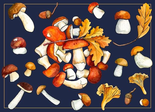 Cartão de floresta cogumelos no escuro